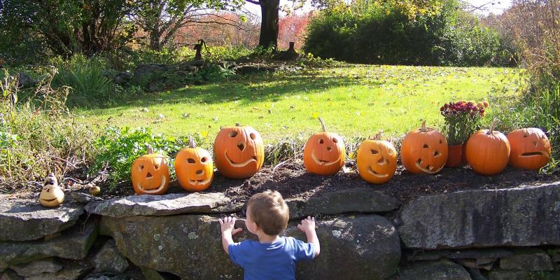 Pumpkins on stone wall